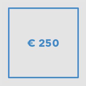 € 250